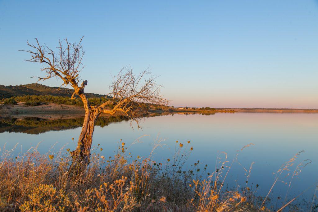 Lago Alqueva 2 1024x683 O Local