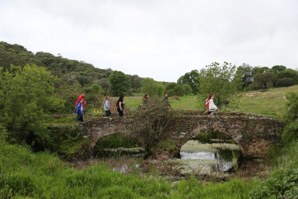 Ponte da Orada 1024x683 O Local