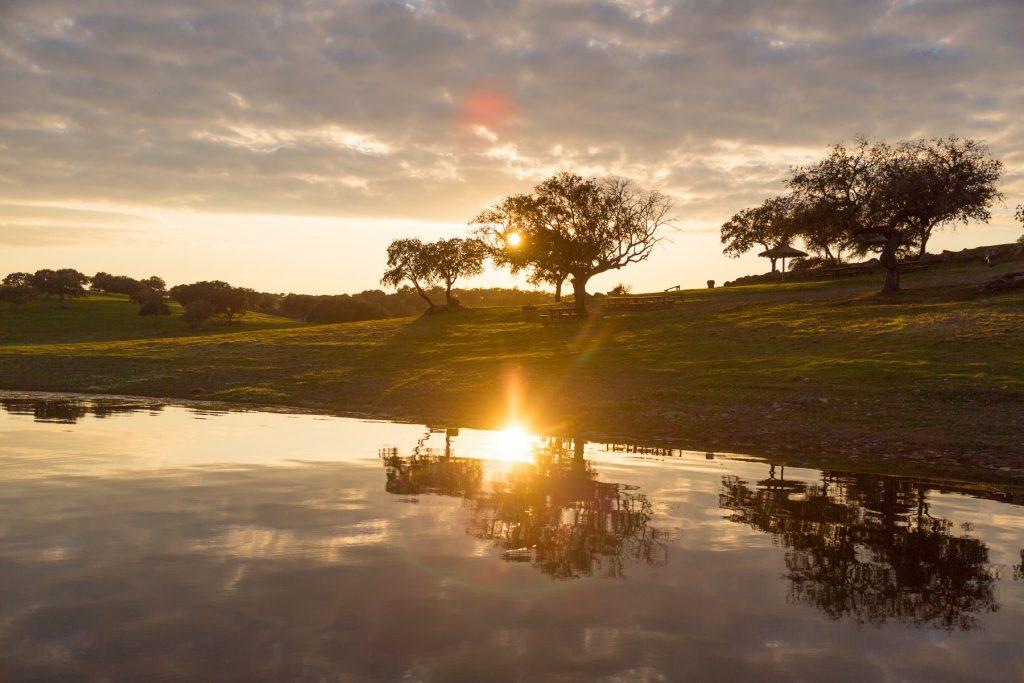 Parque de Merendas de Campinho 1024x683 Andanças 2021